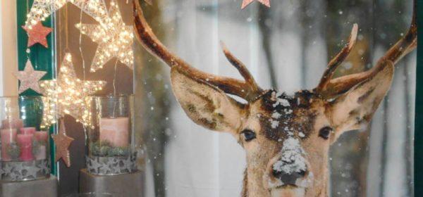 Advents- & Weihnachtsausstellung am Sonntag, 17. November 13-18 Uhr